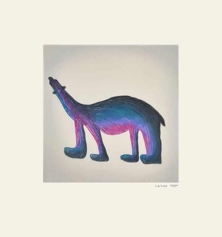 Saimaiyu Akesuk: Purple Bear etching and aquatint 2015