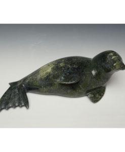 Noah Jaw Seal