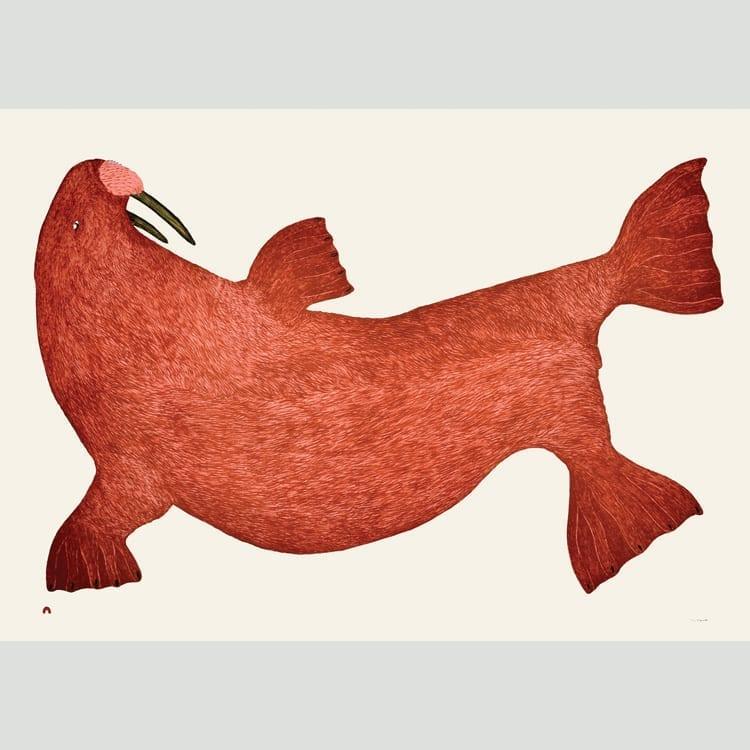 Tim Pitsiulak Red Walrus