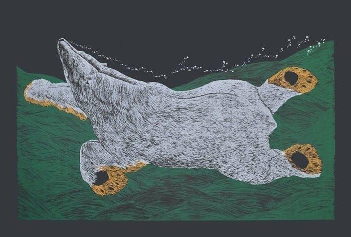 Tim Pitsiulak Swimming Bear