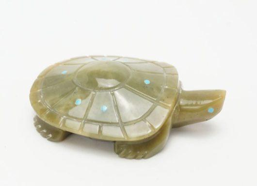 Ephran Chavez serpentine turtle