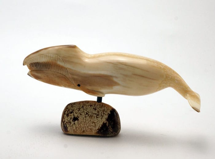 Ivory bowhead whale Online