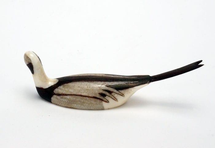 Charles Kokuluk Longtail Duck