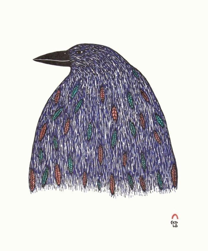 Ningiukulu Teevee Iridescent Raven