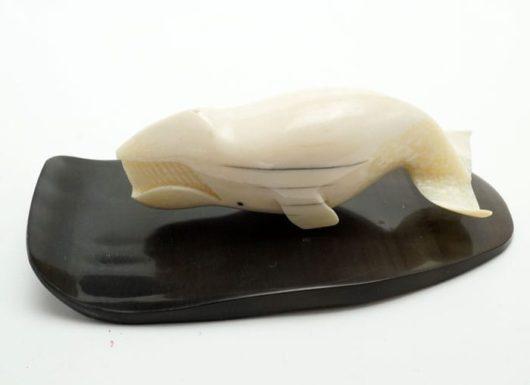 Eldon Boolowon Ivory Bowhead Whale