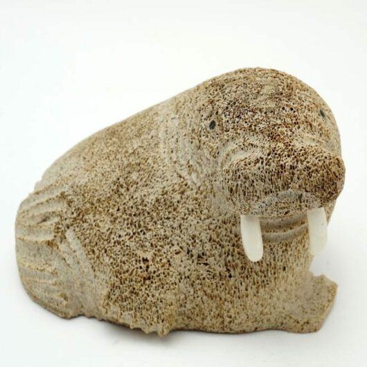 Lewis Iyakitan whalebone walrus