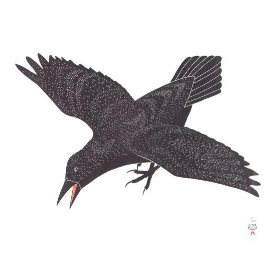 Kananginak Pootoogook Raven's Alarm