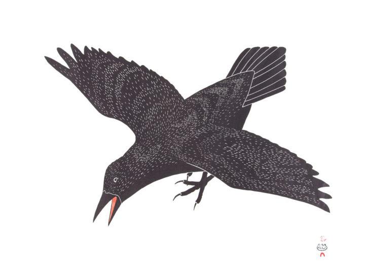 Cape Dorset 2019 Spring Release: Kananginak Pootoogook