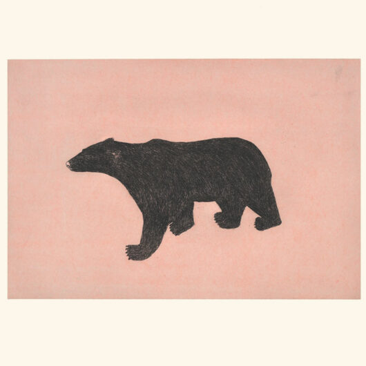 OHITO ASHOONAProwling Bear