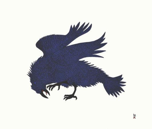 QUVIANAQTUK PUDLATElectric Raven