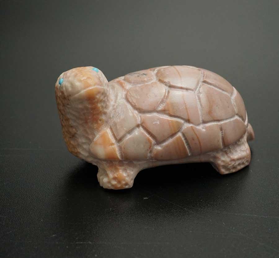 Michael Tucson Dolomite Turtle